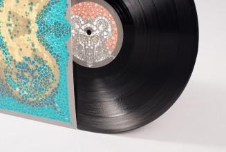 Take a closer look at Danger Doom&#8217;s lavish <em>The Mouse &#038; The Mask</em> vinyl edition