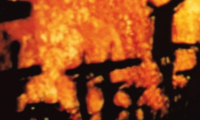 godflesh-have-seminal-lp-streecleaner-reissued-on-coloured-vinyl