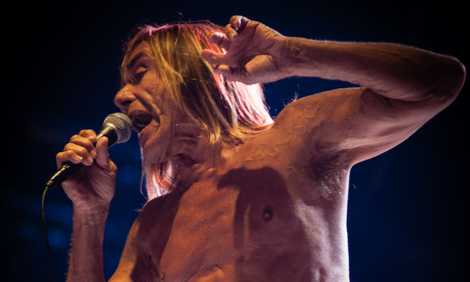 Iggy Pop and alva noto collaborate on limited edition <em>Leaves of Grass</em> vinyl