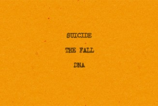 Suicide, The Fall and DNA singles reissued on limited colour 7″