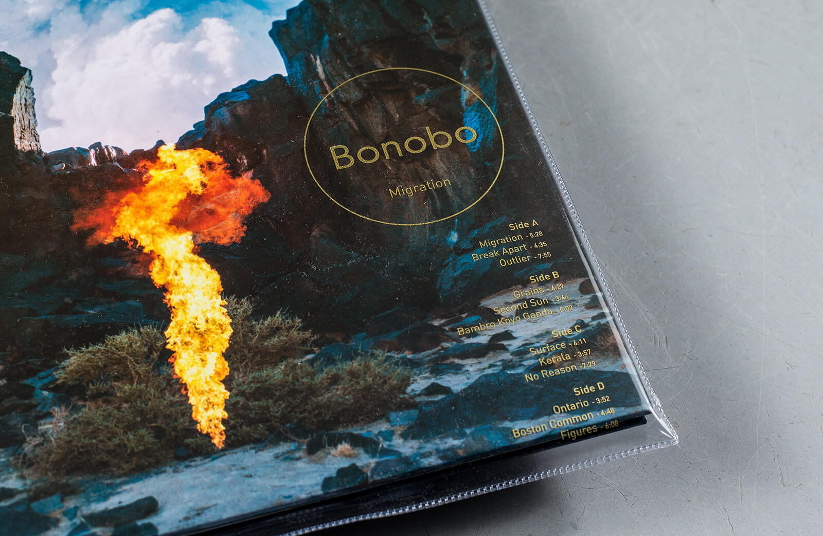 bonobo migration torrent