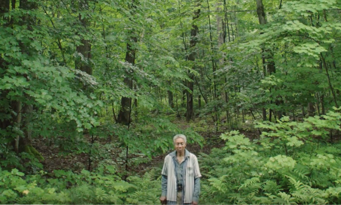 Commune with Beverly Glenn-Copeland's ambient synthesis in this gorgeous short film