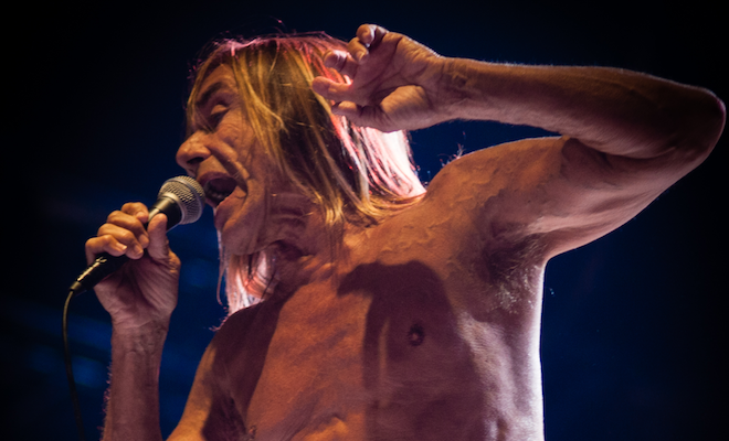 Iggy Pop to release 18th studio album, Free, on limited blue vinyl
